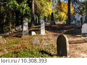 Купить «forgotten and unkempt Jewish cemetery with the strangers», фото № 10308393, снято 23 июля 2019 г. (c) PantherMedia / Фотобанк Лори