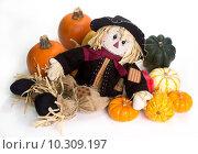 Купить «Harvest scarecrow laying on a bed squash, fairytale, cinderella, and Halloween pumpkins.», фото № 10309197, снято 20 октября 2018 г. (c) PantherMedia / Фотобанк Лори