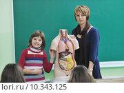 Купить «learn biology in school», фото № 10343125, снято 15 октября 2018 г. (c) PantherMedia / Фотобанк Лори