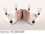 Купить «Brain And Lightbulb Imagination», фото № 10369829, снято 21 апреля 2019 г. (c) PantherMedia / Фотобанк Лори