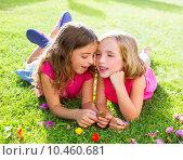 Купить «children girls playing whispering on flowers grass», фото № 10460681, снято 22 февраля 2019 г. (c) PantherMedia / Фотобанк Лори