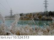 Морозное утро. Стоковое фото, фотограф Виталий Пушкарев / Фотобанк Лори