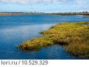 Купить «Bolsa Chica Wetlands», фото № 10529329, снято 18 июня 2019 г. (c) PantherMedia / Фотобанк Лори