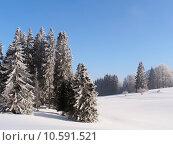 Купить «Jura Mountain in Winter, mont d or area», фото № 10591521, снято 22 июля 2019 г. (c) PantherMedia / Фотобанк Лори