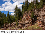 Купить «Treasures of New Mexico», фото № 10610253, снято 21 апреля 2019 г. (c) PantherMedia / Фотобанк Лори
