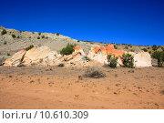 Купить «Treasures of New Mexico», фото № 10610309, снято 20 июня 2019 г. (c) PantherMedia / Фотобанк Лори