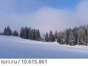 Купить «Jura Mountain in Winter at dawn, Metabief area», фото № 10615861, снято 22 июля 2019 г. (c) PantherMedia / Фотобанк Лори