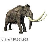 Купить «elephant ivory palaeontology tusk mammoth», фото № 10651933, снято 16 октября 2019 г. (c) PantherMedia / Фотобанк Лори