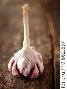 Купить «Fresh cloves of aromatic garlic», фото № 10662637, снято 24 июня 2019 г. (c) PantherMedia / Фотобанк Лори