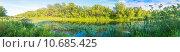 Панорама летнего озера с камышами в солнечный день. Стоковое фото, фотограф Сергей Лысенко / Фотобанк Лори