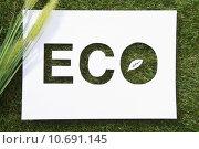 Купить «green environment field power energy», фото № 10691145, снято 27 июня 2019 г. (c) PantherMedia / Фотобанк Лори