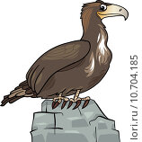 Купить «cartoon eagle wild bird», иллюстрация № 10704185 (c) PantherMedia / Фотобанк Лори