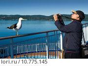 Купить «Фотограф снимает позирующую ему чайку», фото № 10775145, снято 12 августа 2015 г. (c) Александр Лицис / Фотобанк Лори