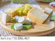Купить «caucasian european blank round cheese», фото № 10886461, снято 26 мая 2019 г. (c) PantherMedia / Фотобанк Лори