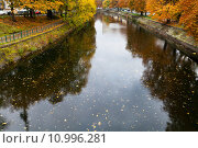 Купить «leaves fall on water of Landwehrkanal in Berlin», фото № 10996281, снято 28 января 2020 г. (c) PantherMedia / Фотобанк Лори