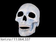 Купить «medicine halloween skull scare skullcap», фото № 11064337, снято 19 октября 2018 г. (c) PantherMedia / Фотобанк Лори