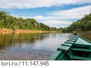 Купить «boat in the river in the peruvian Amazon jungle at Madre de Dios Peru», фото № 11147945, снято 16 ноября 2018 г. (c) PantherMedia / Фотобанк Лори