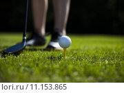 Купить «Golf ball on green meadow, driver  », фото № 11153865, снято 24 августа 2019 г. (c) PantherMedia / Фотобанк Лори