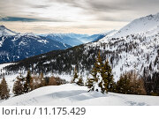 Купить «Madonna di Campiglio Ski Resort, Italian Alps, Italy», фото № 11175429, снято 24 июля 2019 г. (c) PantherMedia / Фотобанк Лори