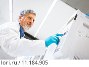 Купить «Senior male researcher carrying out scientific research in a lab using a gas chromatograph (shallow DOF; color toned image)», фото № 11184905, снято 27 апреля 2018 г. (c) PantherMedia / Фотобанк Лори