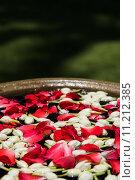 Купить «Цветы и розовые лепестки в воде, тайский фестиваль Сонгкран», фото № 11212385, снято 13 апреля 2015 г. (c) Юлия Младич / Фотобанк Лори