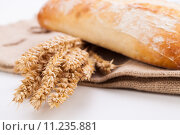Купить «bread grain pastry wheat roll», фото № 11235881, снято 23 октября 2019 г. (c) PantherMedia / Фотобанк Лори