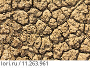 Купить «Cracked by the heat long lifeless soil», фото № 11263961, снято 19 марта 2019 г. (c) PantherMedia / Фотобанк Лори