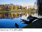 Купить «Skaryszewski Park in Warsaw», фото № 11291885, снято 15 февраля 2019 г. (c) PantherMedia / Фотобанк Лори