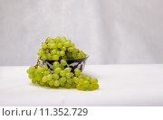 Виноград в каплях воды. Стоковое фото, фотограф Полина Соколова / Фотобанк Лори