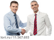 Купить «Handsome young executives shaking hands», фото № 11567693, снято 23 апреля 2018 г. (c) PantherMedia / Фотобанк Лори
