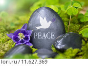 Купить «rest peace silence memory cemetery», фото № 11627369, снято 21 января 2018 г. (c) PantherMedia / Фотобанк Лори