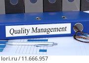 Купить «Quality Management», фото № 11666957, снято 16 июня 2019 г. (c) PantherMedia / Фотобанк Лори