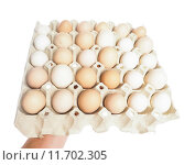 Купить «Farmed brown and white eggs in a container», фото № 11702305, снято 19 июня 2019 г. (c) PantherMedia / Фотобанк Лори