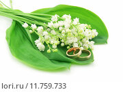 Купить «Lily of the Valley and Golden Rings Isolated on White», фото № 11759733, снято 12 декабря 2017 г. (c) PantherMedia / Фотобанк Лори