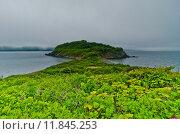 Остров Пахтусова. Стоковое фото, фотограф Денис Карелин / Фотобанк Лори