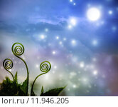 Купить «Plant tendrils on night fantasy background», фото № 11946205, снято 16 октября 2018 г. (c) PantherMedia / Фотобанк Лори