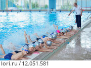 Купить «group of happy kids children at swimming pool class learning to swim», фото № 12051581, снято 25 мая 2019 г. (c) PantherMedia / Фотобанк Лори