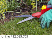 Купить «green care garden gardening lawn», фото № 12085705, снято 20 августа 2018 г. (c) PantherMedia / Фотобанк Лори