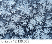 Купить «snowflakes and frost on window pane close up», фото № 12139065, снято 14 ноября 2018 г. (c) PantherMedia / Фотобанк Лори