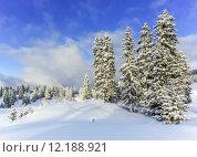 Купить «Jura mountain in winter, Switzerland», фото № 12188921, снято 22 июля 2019 г. (c) PantherMedia / Фотобанк Лори