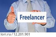 Купить «Freelancer», фото № 12201901, снято 16 июня 2019 г. (c) PantherMedia / Фотобанк Лори