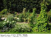 Купить «Jardin des Plantes, a botanical garde in Paris», фото № 12271705, снято 19 июня 2019 г. (c) PantherMedia / Фотобанк Лори