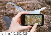 Купить «tourist taking photo of swamp in Arctic tundra», фото № 12282929, снято 23 февраля 2019 г. (c) PantherMedia / Фотобанк Лори