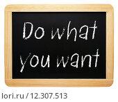 Купить «Do what you want», фото № 12307513, снято 17 ноября 2018 г. (c) PantherMedia / Фотобанк Лори