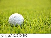 Купить «Dirty golf ball on the grass», фото № 12310105, снято 25 апреля 2019 г. (c) PantherMedia / Фотобанк Лори