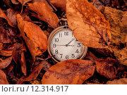 Купить «Clock in the autumn», фото № 12314917, снято 22 мая 2019 г. (c) PantherMedia / Фотобанк Лори