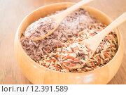 Купить «Multi whole grain of organic jasmine rice», фото № 12391589, снято 23 июля 2019 г. (c) PantherMedia / Фотобанк Лори
