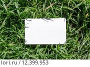 Купить «Blank Note Book in Fresh Green Grass Background», фото № 12399953, снято 22 июля 2019 г. (c) PantherMedia / Фотобанк Лори