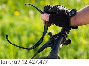 Купить «man nature senior fit bike», фото № 12427477, снято 21 апреля 2019 г. (c) PantherMedia / Фотобанк Лори
