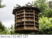 Купить «tower poultry aviary feathering dachratten», фото № 12457137, снято 20 июня 2019 г. (c) PantherMedia / Фотобанк Лори